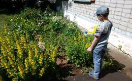 Юные чепчане украшают цветами родной город