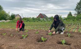 Юные садоводы из Лебяжья открыли трудовую четверть