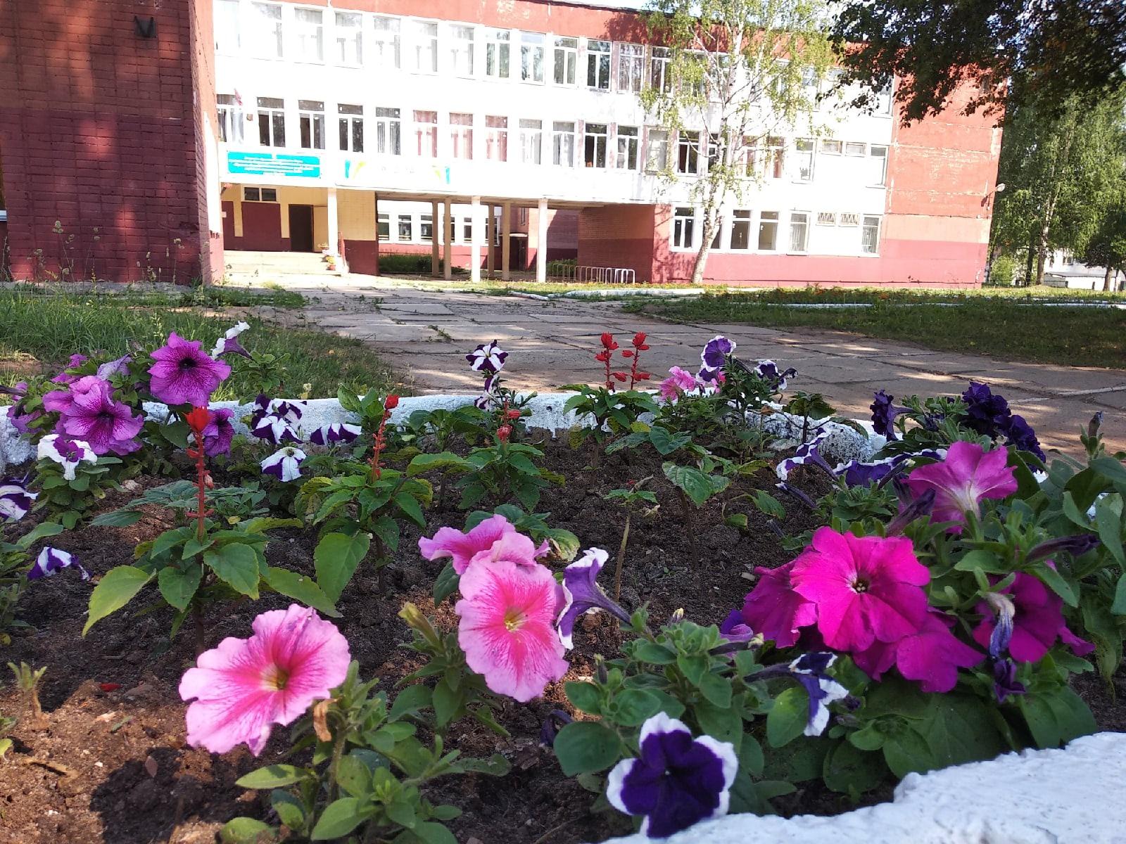 В Кировской области стартовал конкурс «Украсим Родину цветами!»