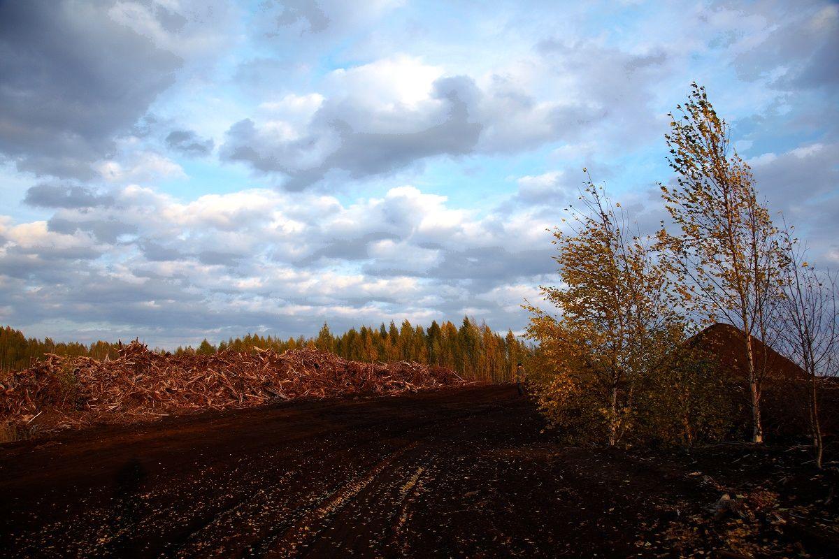 Группа Т Плюс построит торфоперерабатывающий завод в Кировской области