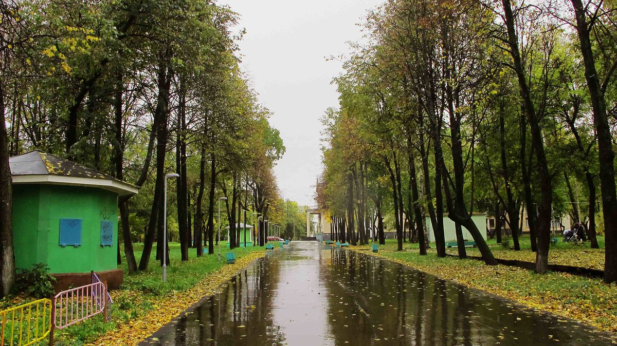 В следующем году начнется реновация Гагаринского парка