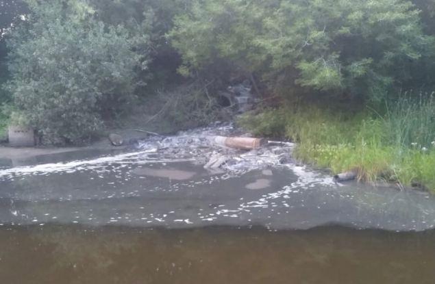 ОНФ привлекает внимание к загрязнениюреки Медянка вблизи Мурыгино