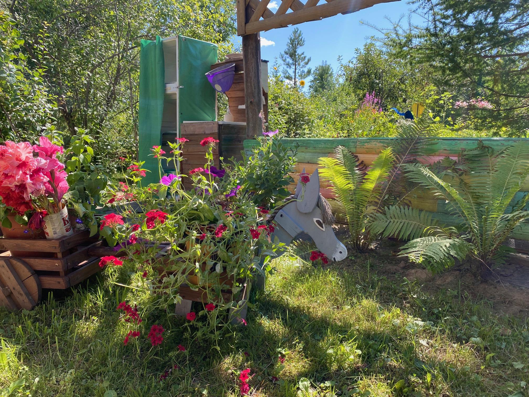 Вятские садоводы едут на дачи за здоровьем и долголетием