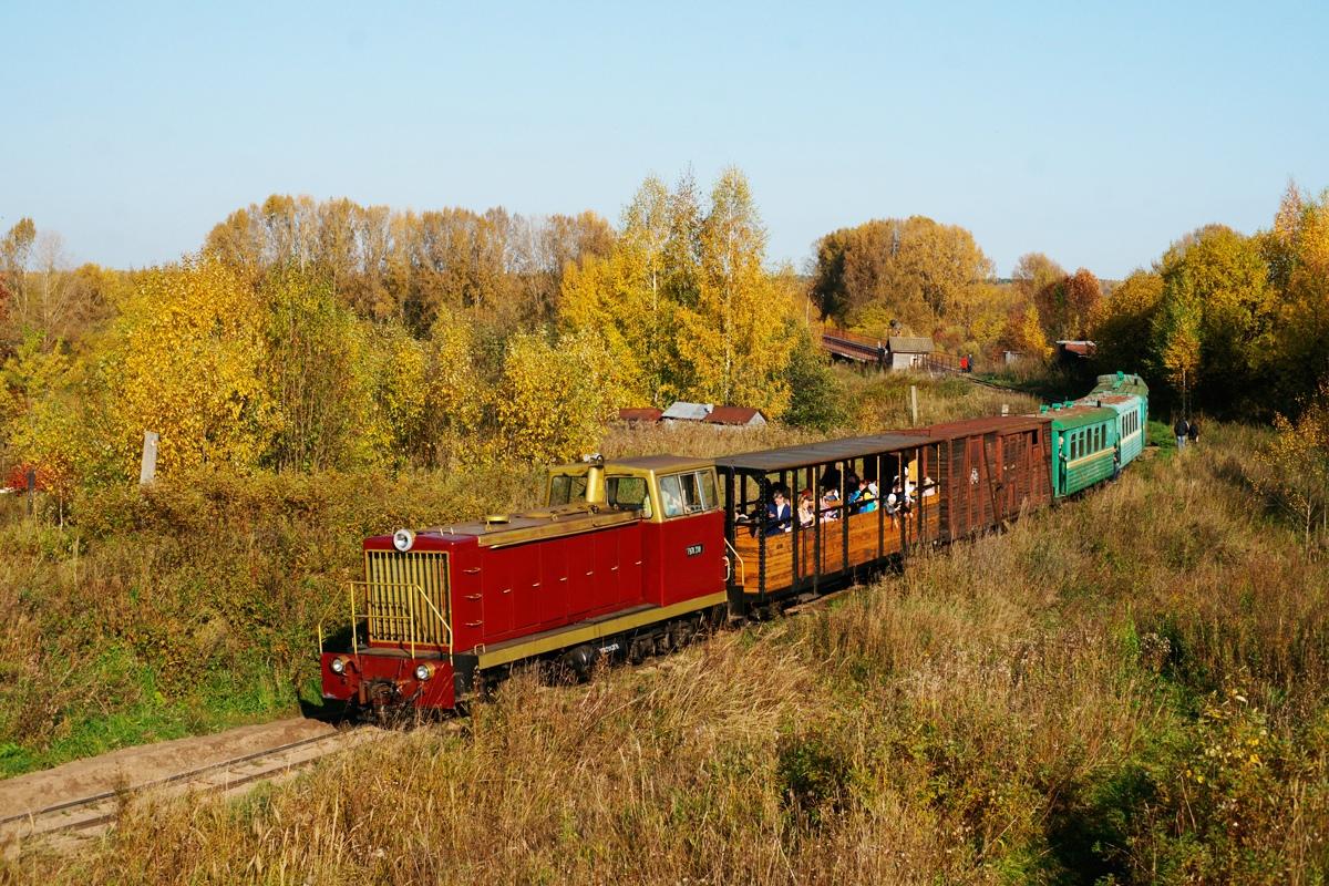 Мэрия Кирово-Чепецка хочет судиться с «Музеем железной дороги» в Каринторфе