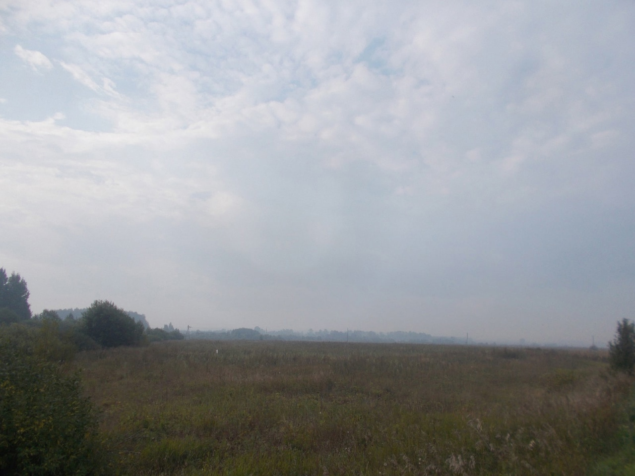 Дым от лесного пожара в Марий Эл добрался до Кировской области
