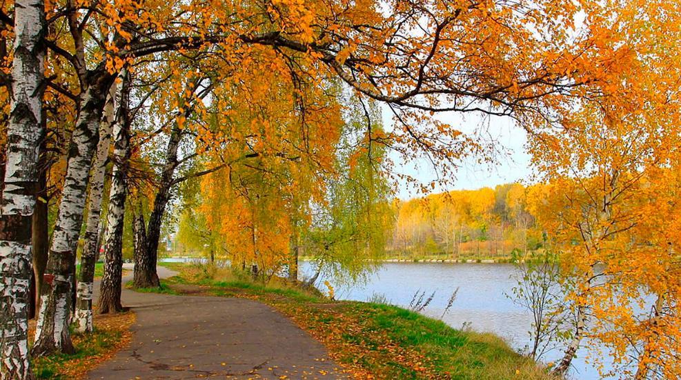 На выходных в Кирове ожидается прохладная погода