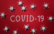В Кировской области зафиксировано 113 новых случаев заражения коронавирусом