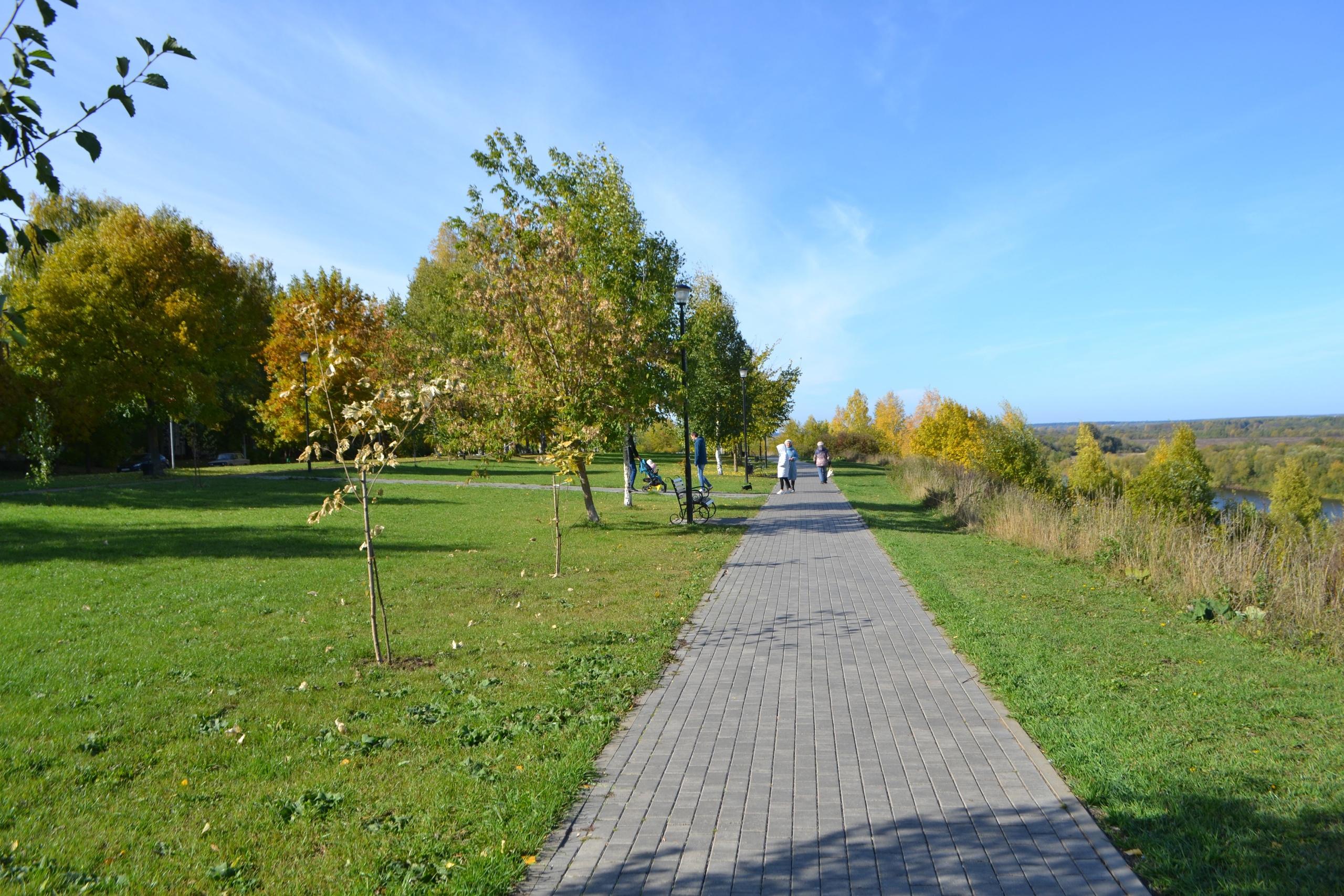 На набережной Кирово-Чепецка восстановлены зеленые насаждения: березки, клены и дубки