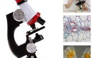Советы по выбору микроскопа для детей
