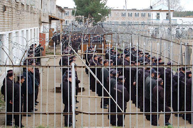 Заключенный предлагал 255 тысяч рублей охраннику за возможность передавать алкоголь в тюрьму