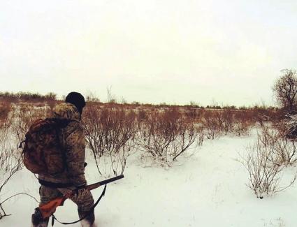 На интерактивной карте Кировской области появились «охотничьи» слои