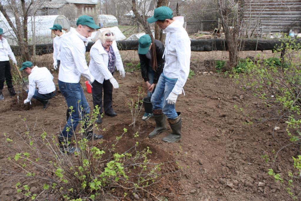 Сады Победы зацветут в Советске