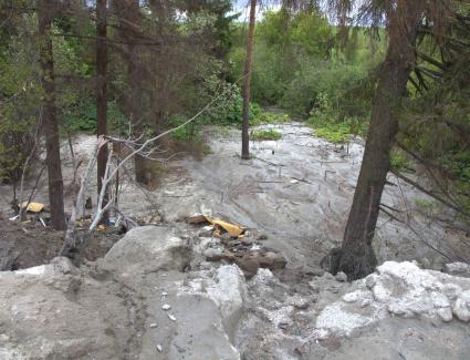 Забетонированный лес. В Кирове обнаружена очередная свалка строительных отходов