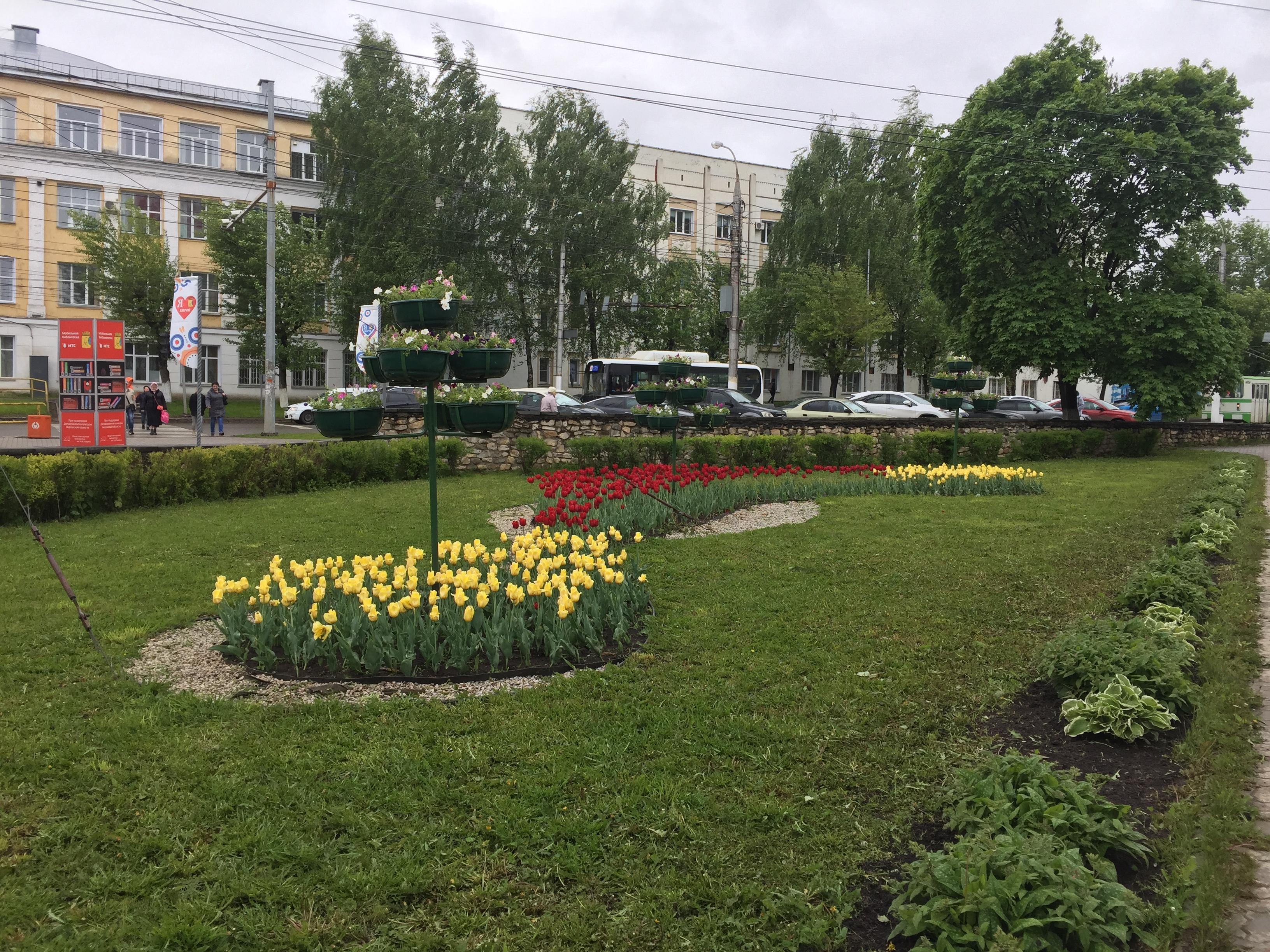 В выходные в Кирове продолжатся дожди