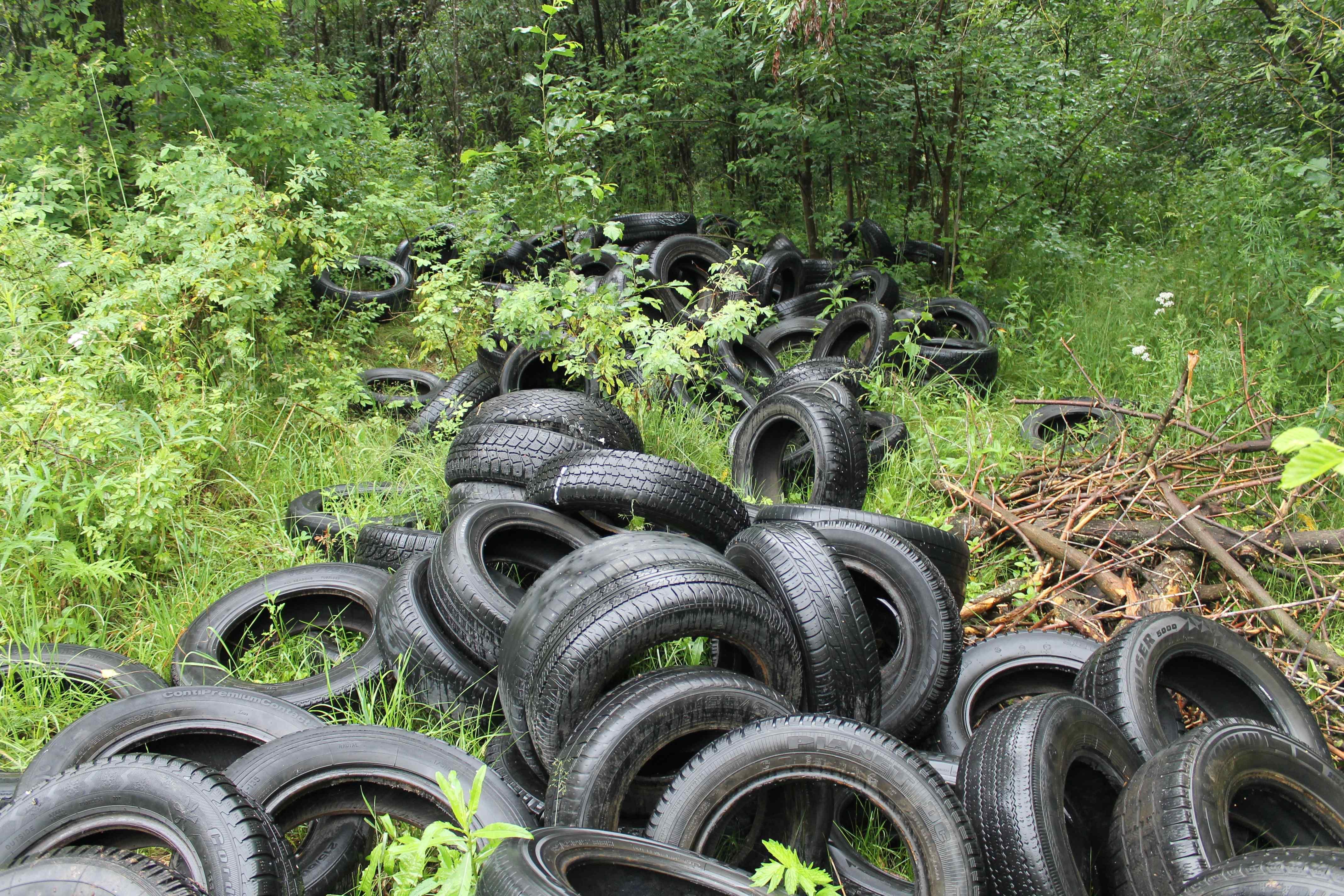 ОНФ: вокруг Кирова растут свалки использованных автопокрышек