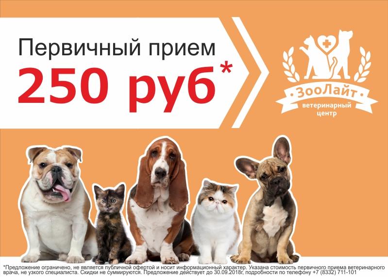 Акция в ЗооЛайте: первичный прием всего 250 рублей*!