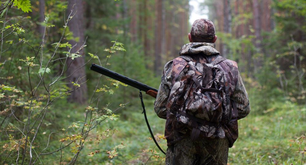 В Кировской области могут быть кабаны с вирусом африканской чумы