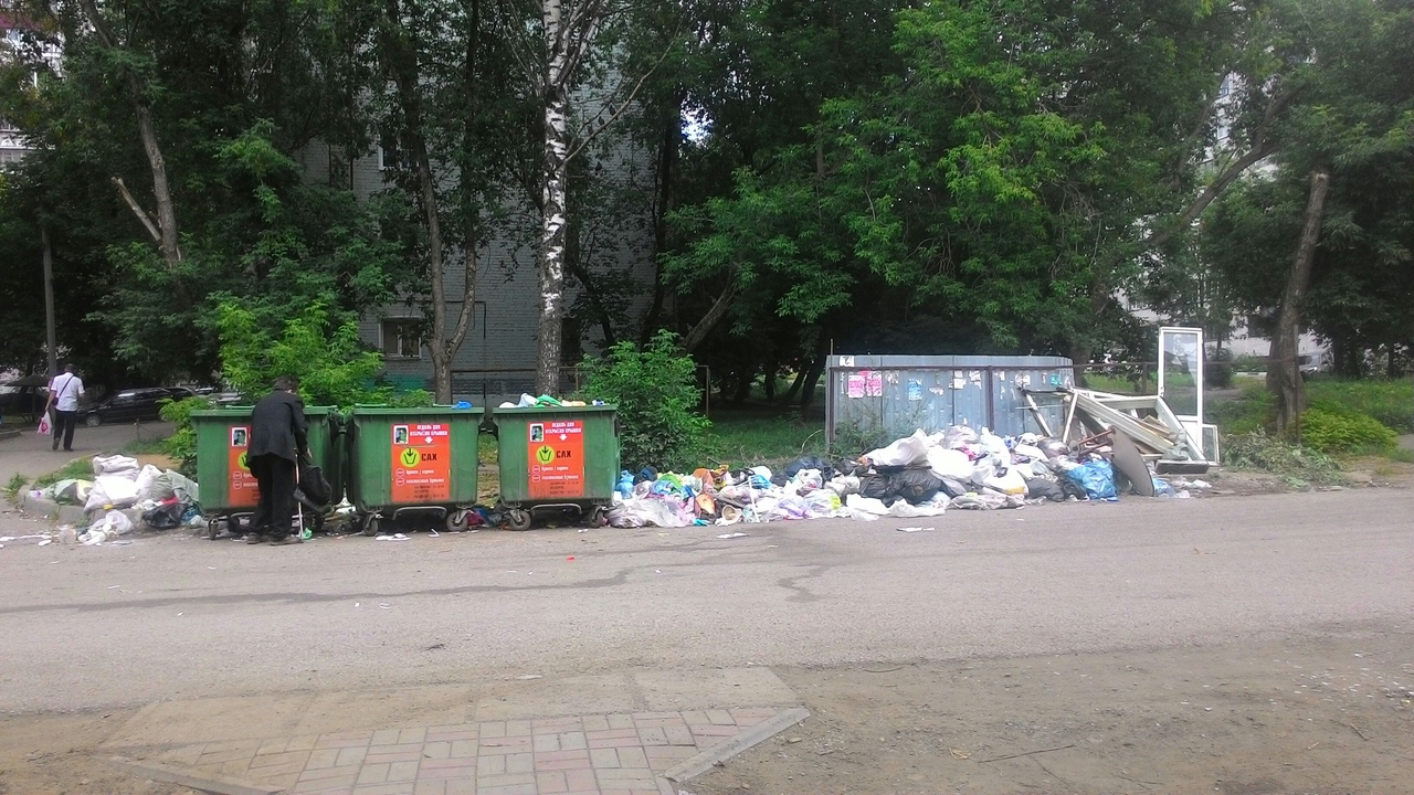 Люди говорят: как решить проблему переполненных мусорных контейнеров?