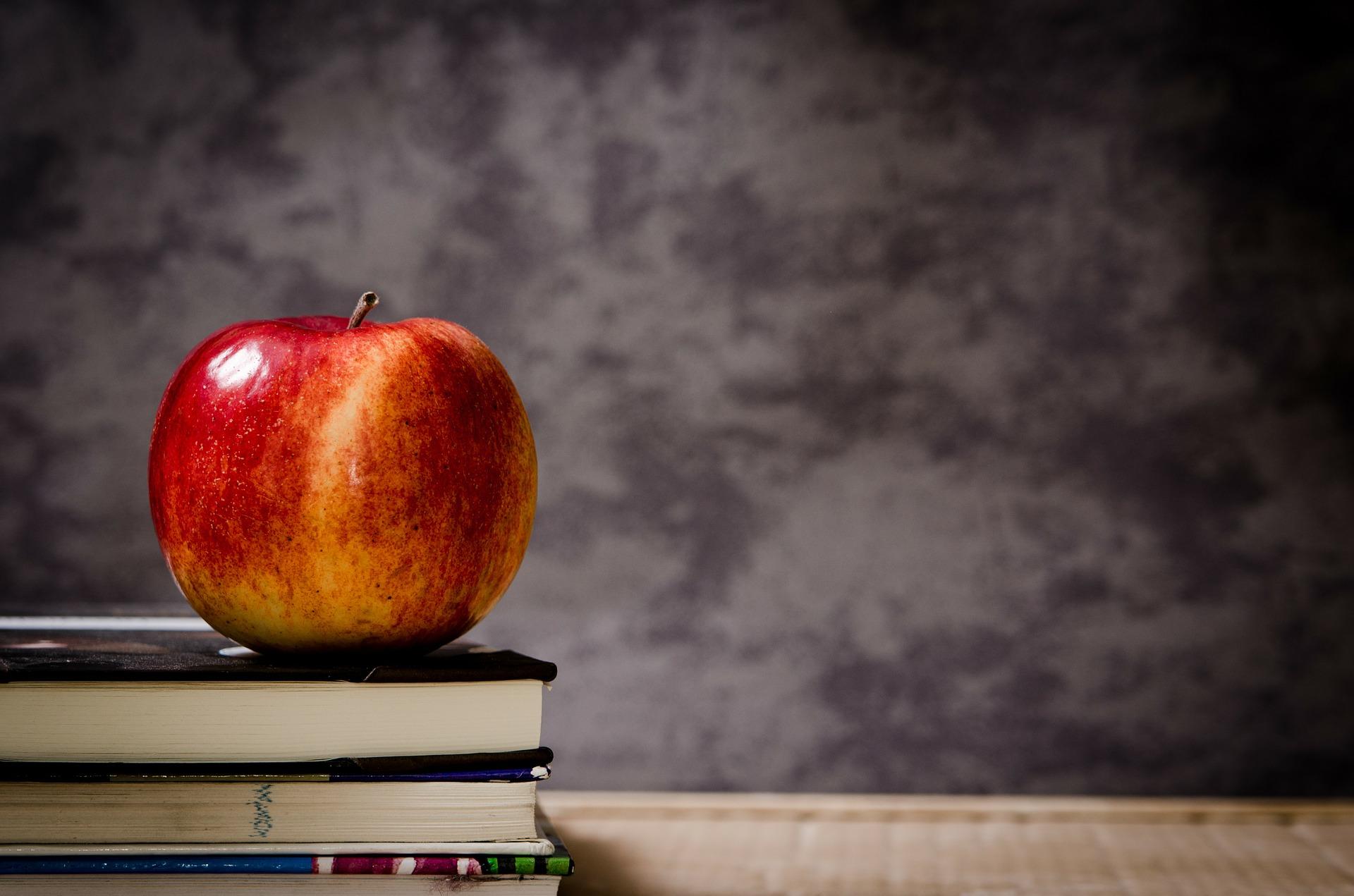 Почитаем: книги о школе и учениках