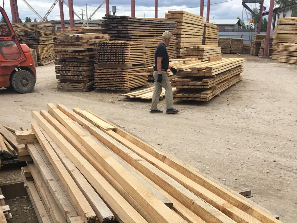 Кировские базы пиломатериалов торгуют древесиной сомнительного происхождения