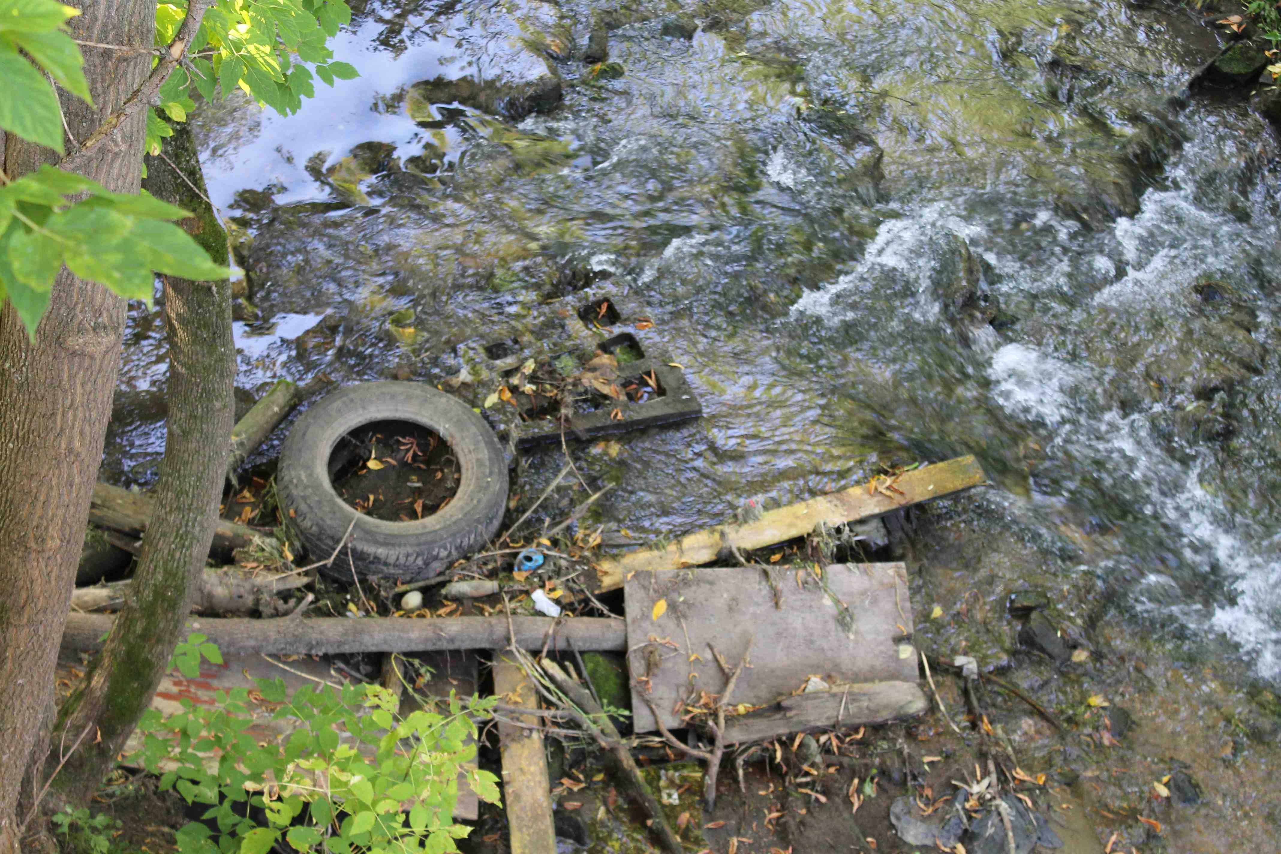Берега единственного родникового пруда в Кирове завалены мусором