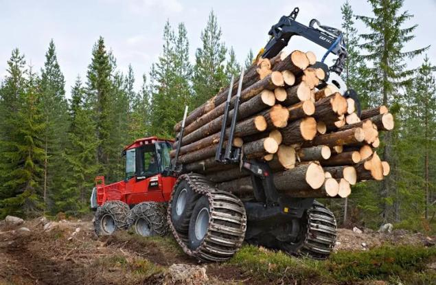 Лесопользователи Кировской области погасили 40 млн рублей задолженности