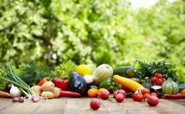 В Кировской области собрали в два раза больше грунтовых овощей