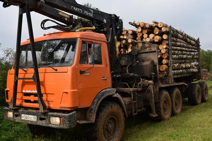 132 многодетные семьи Кировской области получили льготный лес