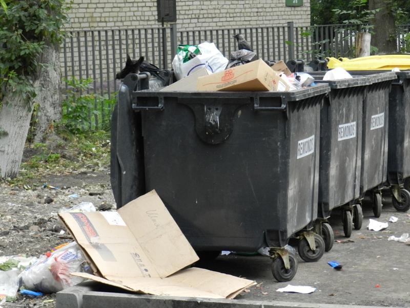 Деньги за мусор: три кировских УК оштрафованы на 450 тысяч рублей
