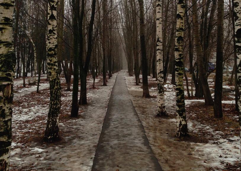 В выходные в Кирове пойдет снег