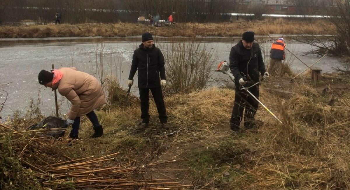 Кировчане продолжают бороться за Люльченку