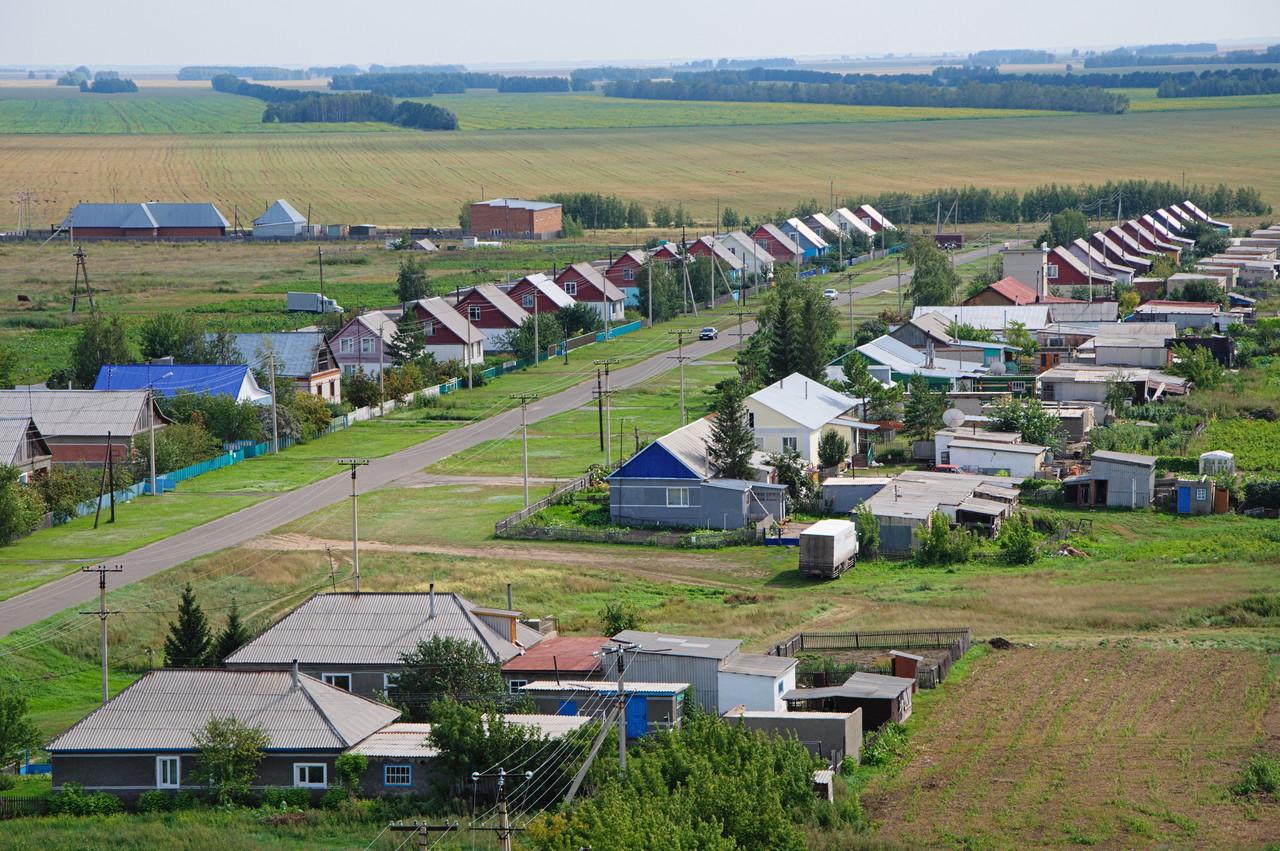 За 10 лет в Кировской области в 3 раза сократилось число сельхозпредприятий