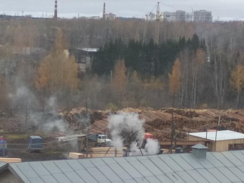 В Кирове появился незаконный крематорий для животных