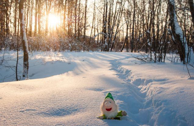 Топ-5 хороших новостей Кирова за 10 декабря