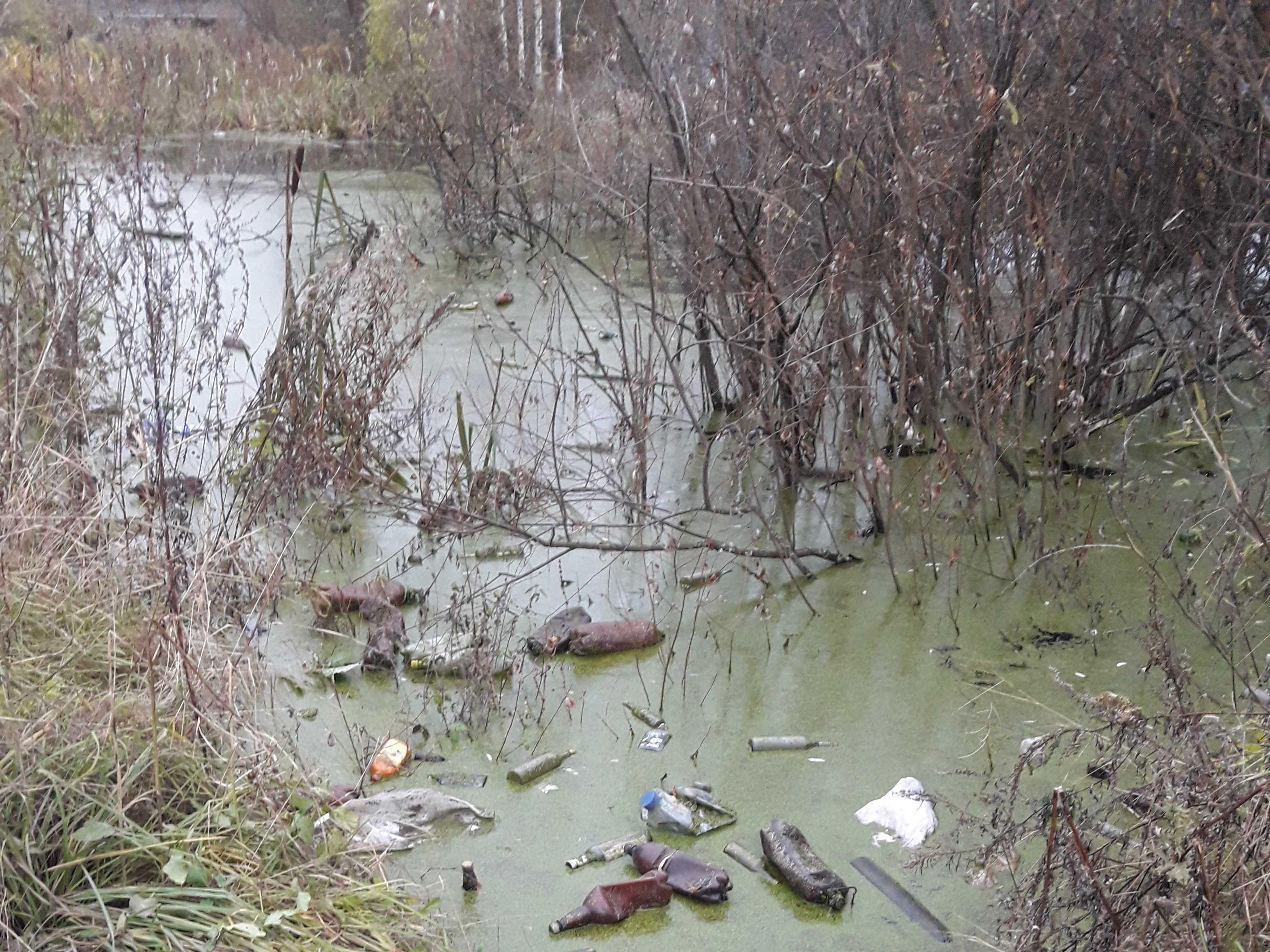 В Кировской области ликвидирован зловонный «пруд»