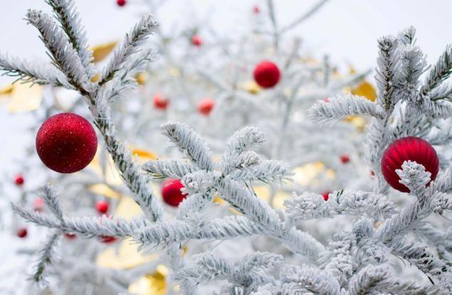 Середина декабря встречает легким морозом и небольшим снегом