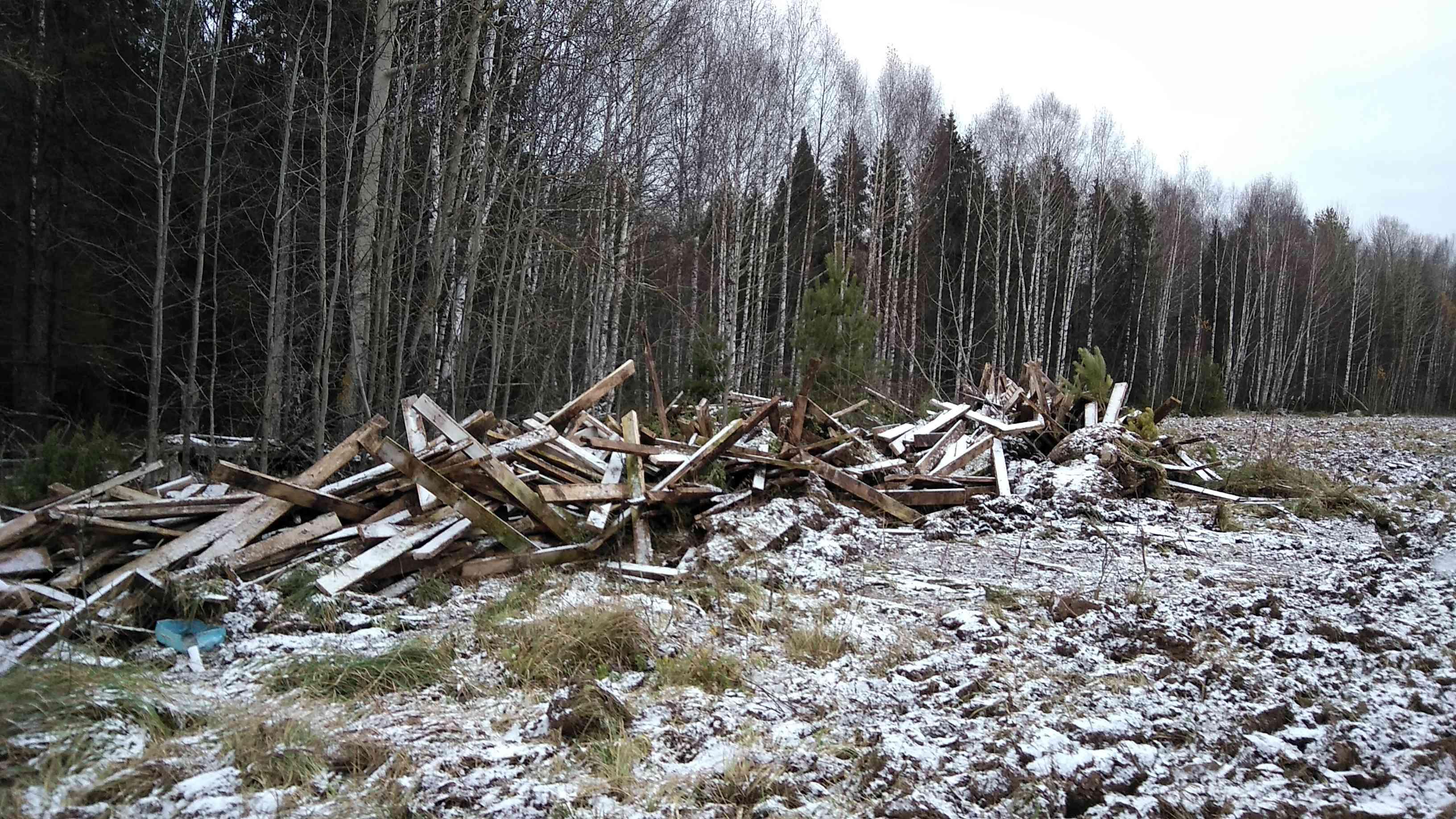 Из 270 несанкционированных свалок в Кировской области ликвидировали только 100