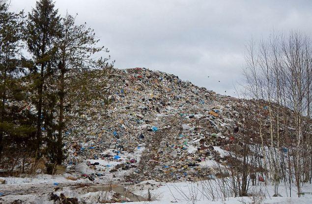«Единая Россия» держит на контроле ситуацию с мусорным полигоном в Костино