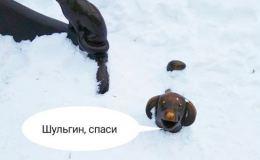 Шульгин, спаси! В центре Кирова под снег уходят даже памятники