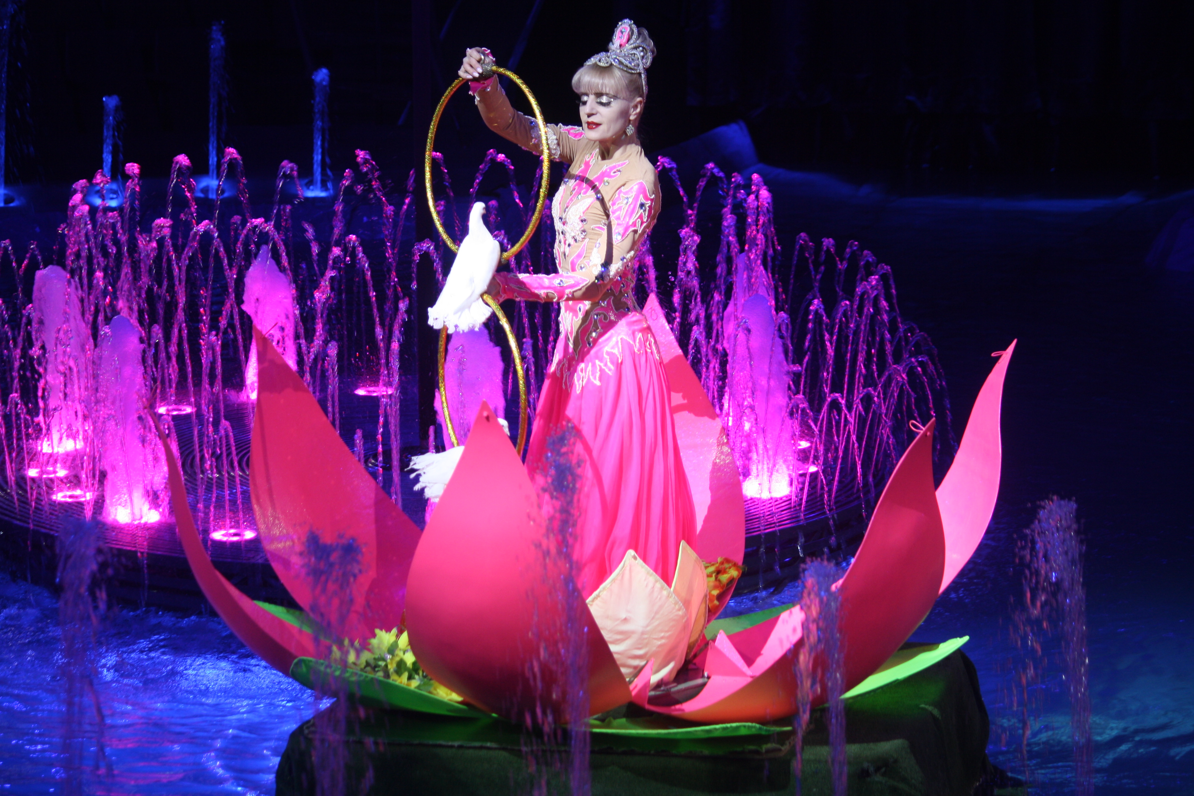 Новый аттракцион на воде стартовал в кировском цирке