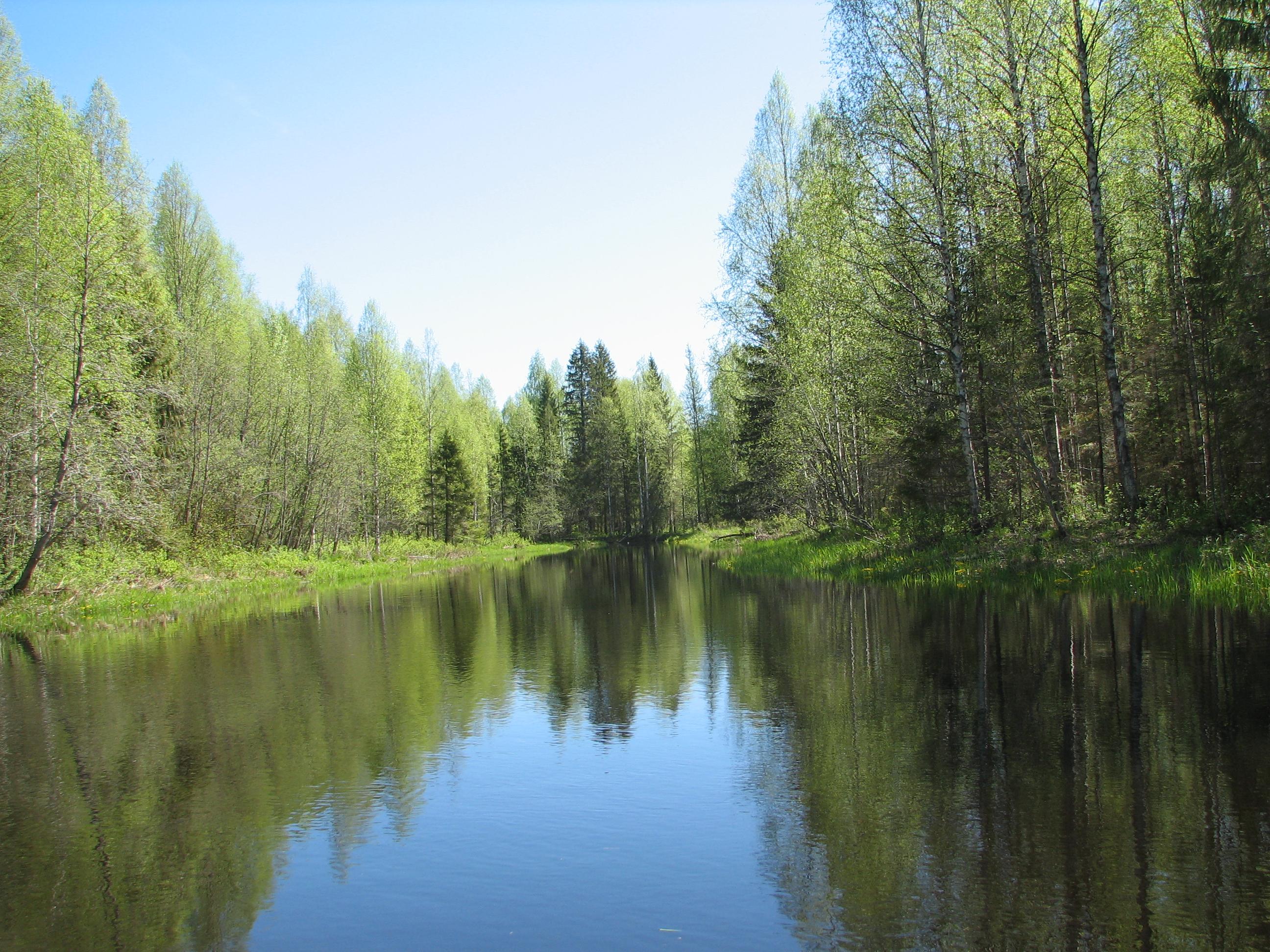 Природоохранная зона области вырастет в три раза