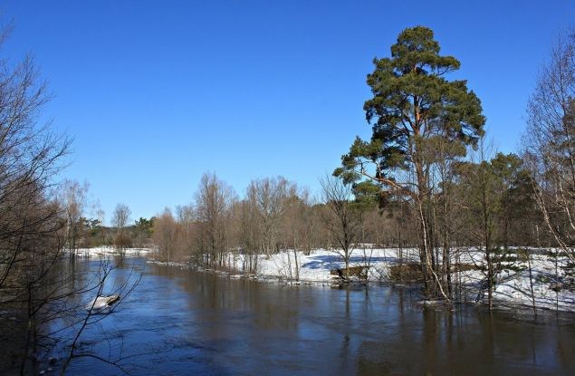 Погода в Кирове. Готовимся ко всему: от дождя и снега до яркого солнца