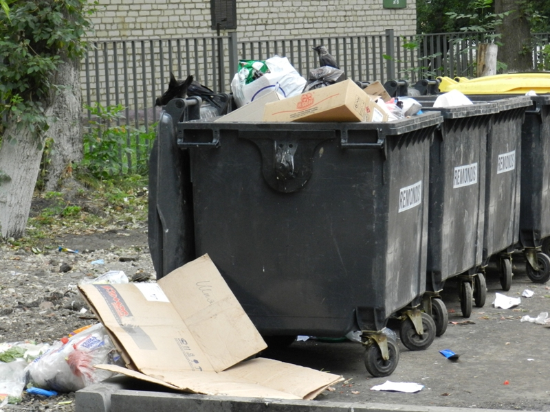 Медведев подписал постановление о снижении платы граждан за вывоз твердых коммунальных отходов