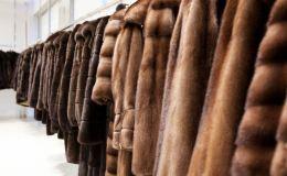 С начала года кировские меховщики отгрузили шуб на 100 миллионов рублей