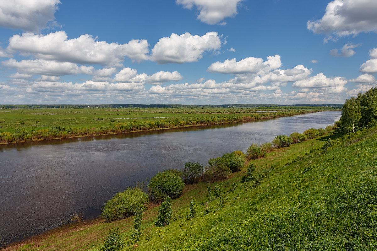 Воды реки Пижмы загрязнены стоками