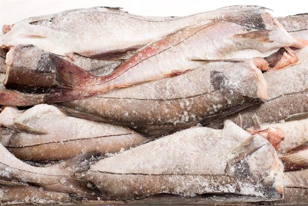 В Кирове «задержали» 67 тонн рыбы