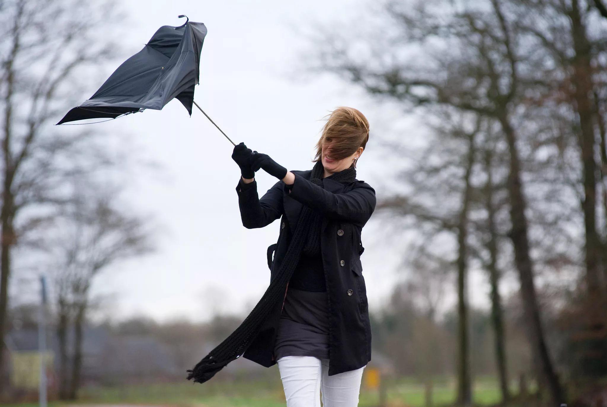 МЧС публикует метеопредупреждение