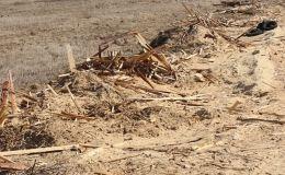 Глава Афанасьевского района заплатит за свалку отходов лесопиления