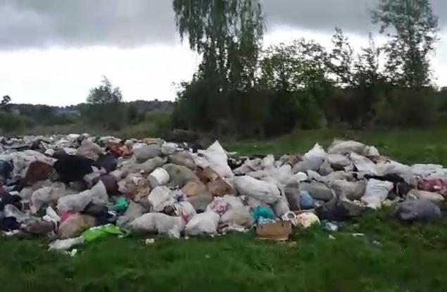 Жителей Малмыжского района возмущают незаконные свалки