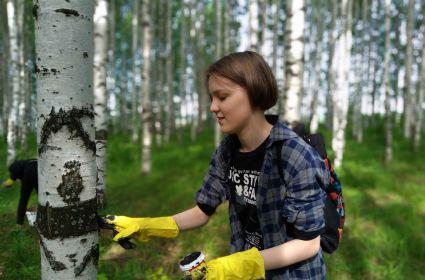 Популярное место отдыха в Кирове может опустеть